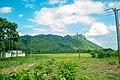 Krobo Hills Ghana 11.jpg