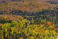 L'automne au Québec (8072522820).jpg