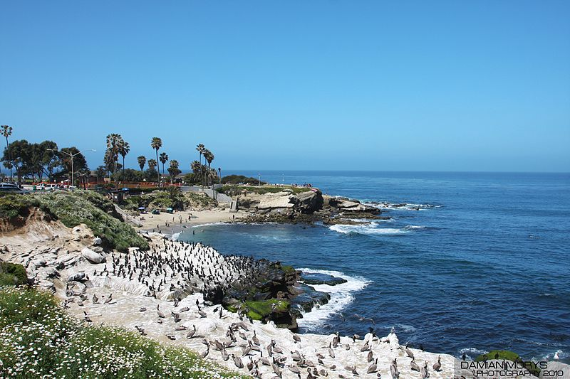File:La Jolla Cove. (5357553811).jpg