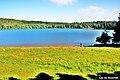 Lac du Bouchet. (3).jpg