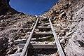 Ladders on trail.jpg