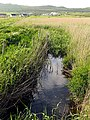 Landscape near Dun Urlann - geograph.org.uk - 16954.jpg