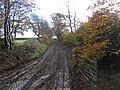 Lane, Humbie. - geograph.org.uk - 73528.jpg