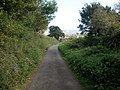 Lane above Starcross - geograph.org.uk - 989518.jpg