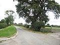 Lane at The Maesydd - geograph.org.uk - 1510427.jpg