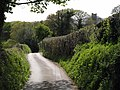 Lane to Moretonhampstead - geograph.org.uk - 1293069.jpg
