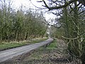 Lane to Thwing - geograph.org.uk - 139455.jpg