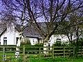 Laragh Cottage Laraghaleas - geograph.org.uk - 1237518.jpg