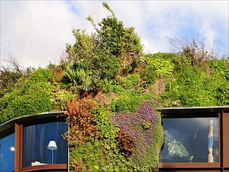 Green wall - Detail of Patrick Blanc's exterior green wall of the Musée du Quai Branly (image 2012).