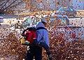 Leaves (16667336501).jpg