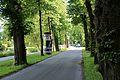 Leopoldskroner Allee mit Leopoldskronstraße - 1.jpg