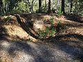 Letchworth Mounds07.jpg