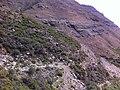 Letele Pass - panoramio (7).jpg