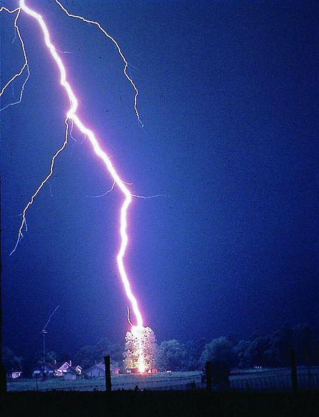 http://upload.wikimedia.org/wikipedia/commons/thumb/b/b1/Lightning_hits_tree.jpg/459px-Lightning_hits_tree.jpg