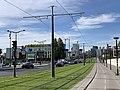 Ligne 3a Tramway Boulevard Poniatowski Paris 2.jpg