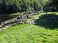 Lilleborg ruins.jpg