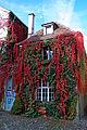 Lindau Altstadt (35) (9948981865).jpg