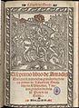 Lisuarte de Grecia, el septimo libro de Amadis 1550.jpg