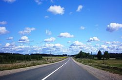 Lithuanian Road 122.JPG