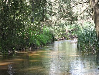 Little Yarra River in Yarra Junction