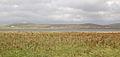 Loch Stilligarry - geograph.org.uk - 242641.jpg