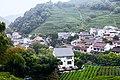 Longjing tea village Hangzhou.jpg
