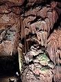 Lovech Province - Yablanitsa Municipality - Village of Brestnitsa - Saeva Dupka Cave (13).jpg