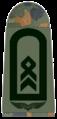 Luftwaffe-161-Stabsfeldwebel.png