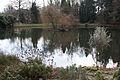 Münster Schloss Botanischer Garten Teich 01.jpg