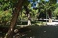 MADRID PARQUE de MADRID PRADERAS y ARBOLEDAS VIEW Ð 6K - panoramio (6).jpg