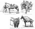 MSHWR - Various transportation means used in the European wars of the 1850 pag 929.png