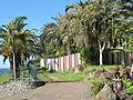 Madeira em Abril de 2011 IMG 1768 (5663213307).jpg