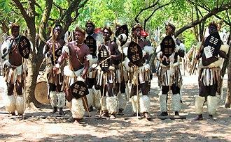 Nguni shield - Image: Mantenga Swazi Cultural Village (3)