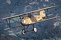 MarkusTatscher Albatros DIII craftlab 02-09-2020 2048JPEG DSC 1447.jpg