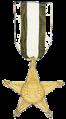 Medalha reconhecimento.png