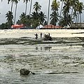 Men burn a boat on the shores of Zanzibar.jpg