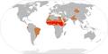 Meningitis-Epidemics-World-Map.png