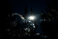 Midnight (3724741729).jpg