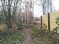 Mikolow, Poland - panoramio (111).jpg