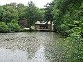 Mill Pond - geograph.org.uk - 541205.jpg