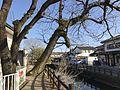 Minami-Shinkawa River near Yoshii Kindergarten.jpg