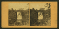 Minnehaha Falls, from Robert N. Dennis collection of stereoscopic views 4.png
