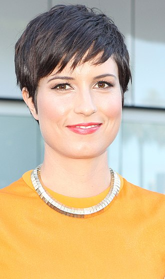 Missy Higgins - Higgins at the ARIA Awards ceremony, December 2013, Star Event Centre, Sydney