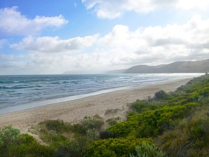 Moggs Creek, Victoria - Moggs Creek beach