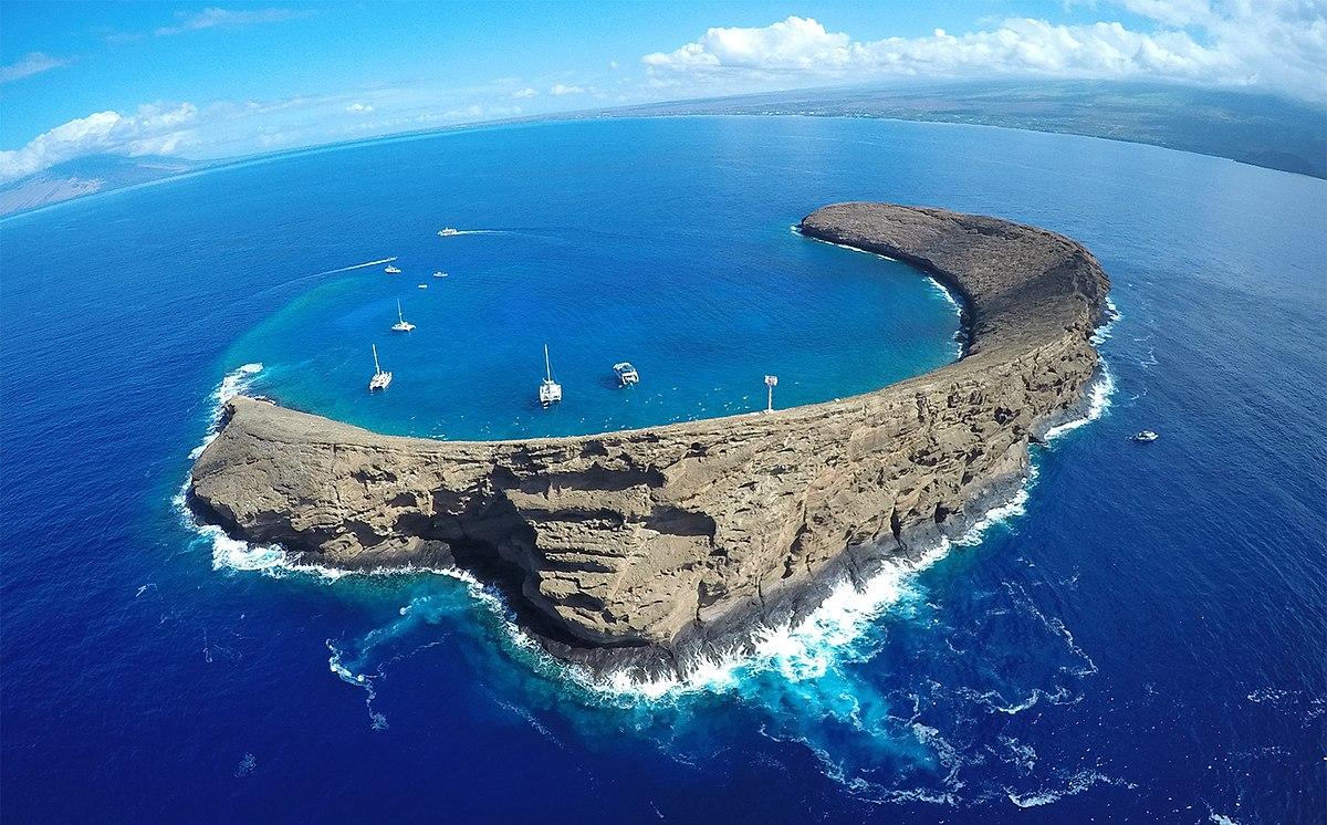 Ã�ロキニ島 Wikipedia
