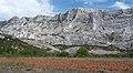 Montage Sainte Victoire vue du bord du Bayon.jpg