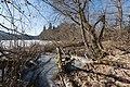 Moosburg Mitterteich-Halbinsel Uferzone Schilfguertel 28012016 0411.jpg