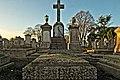 Mount Jerome Cemetery - 146120 (31281680647).jpg
