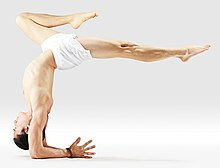 220px Mr yoga scorpion pose yoga asanas Liste des exercices et position à pratiquer