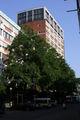 Muenster,Stadthaus1 9421.JPG